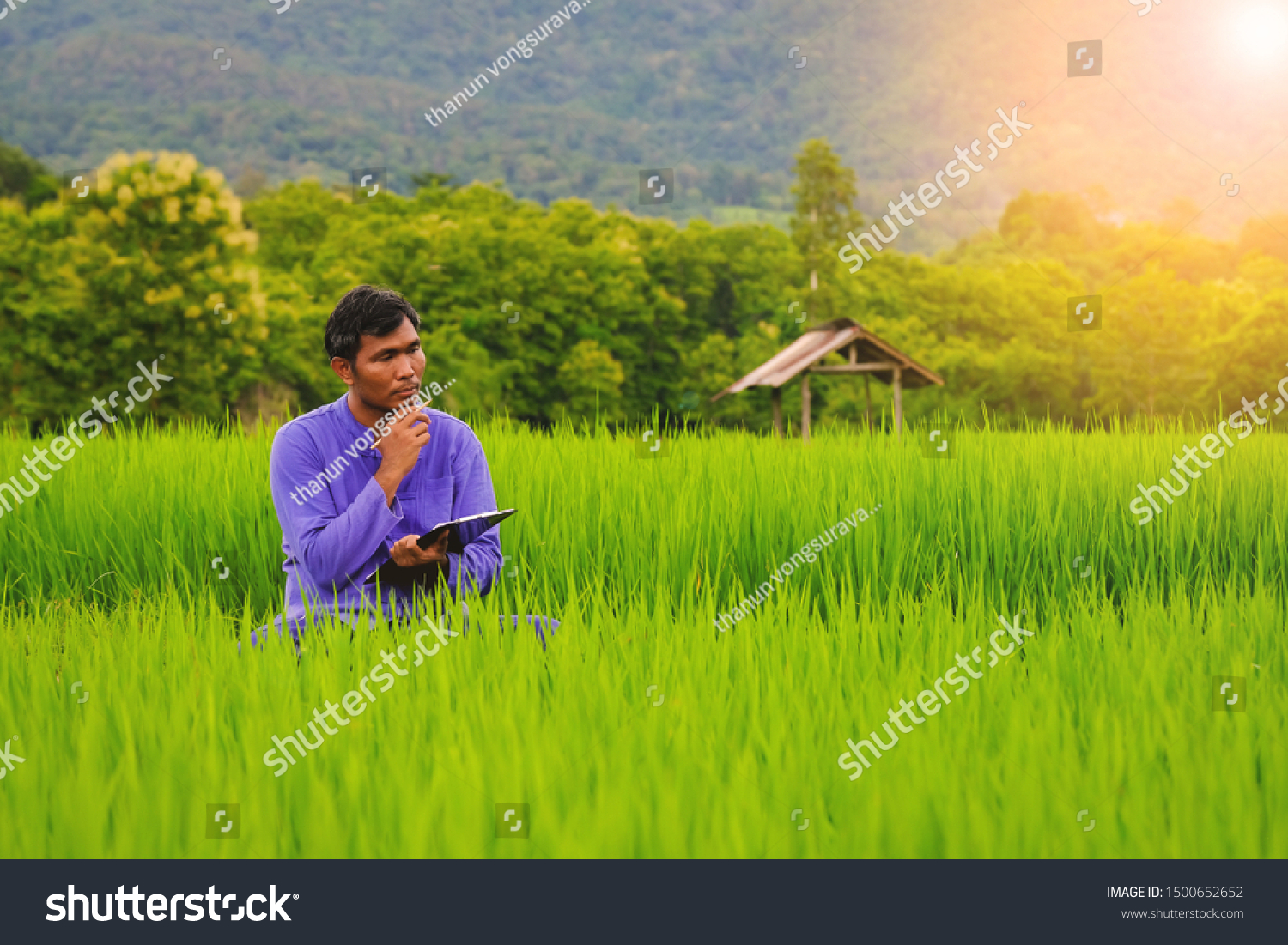 About Productivity farmer thinking calculate about productivity his stock photo