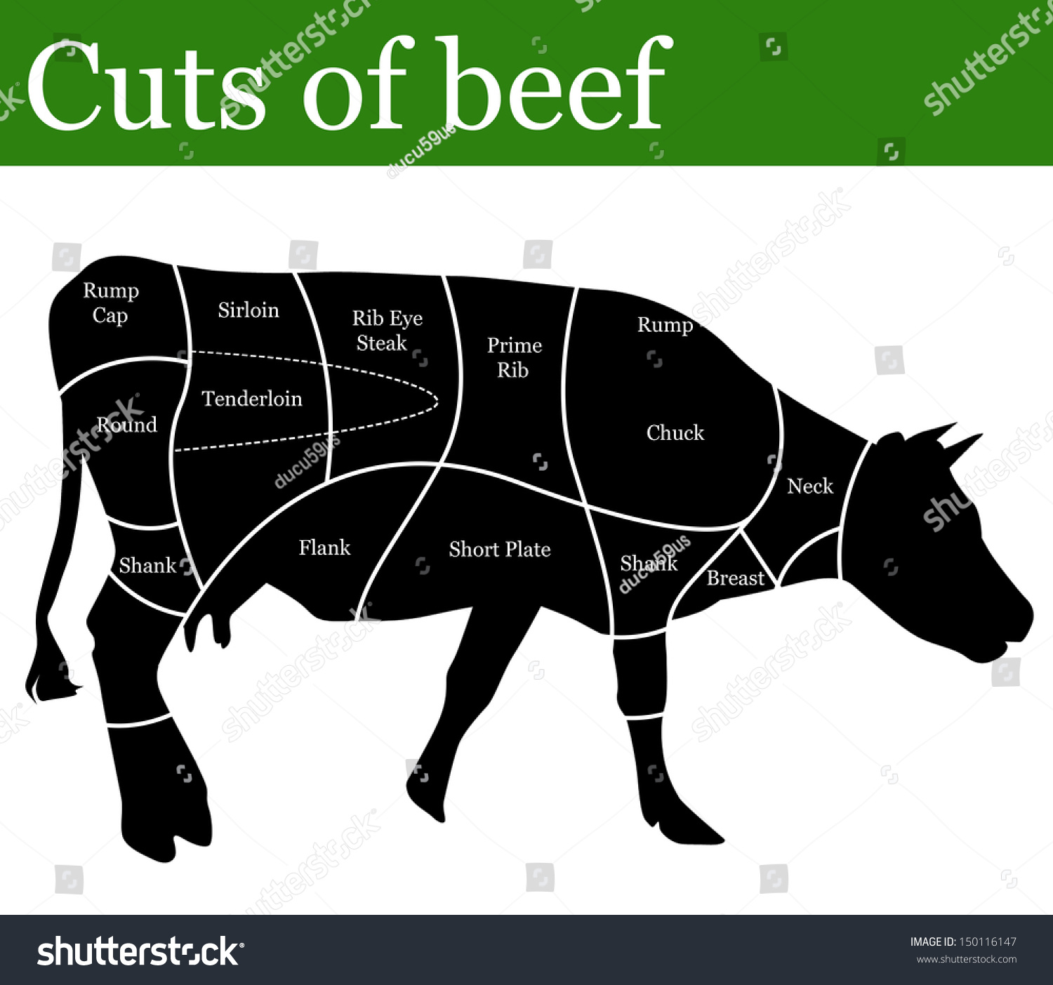 Cuts of beef background vector illustration 150116147 shutterstock - Stukken outs ...