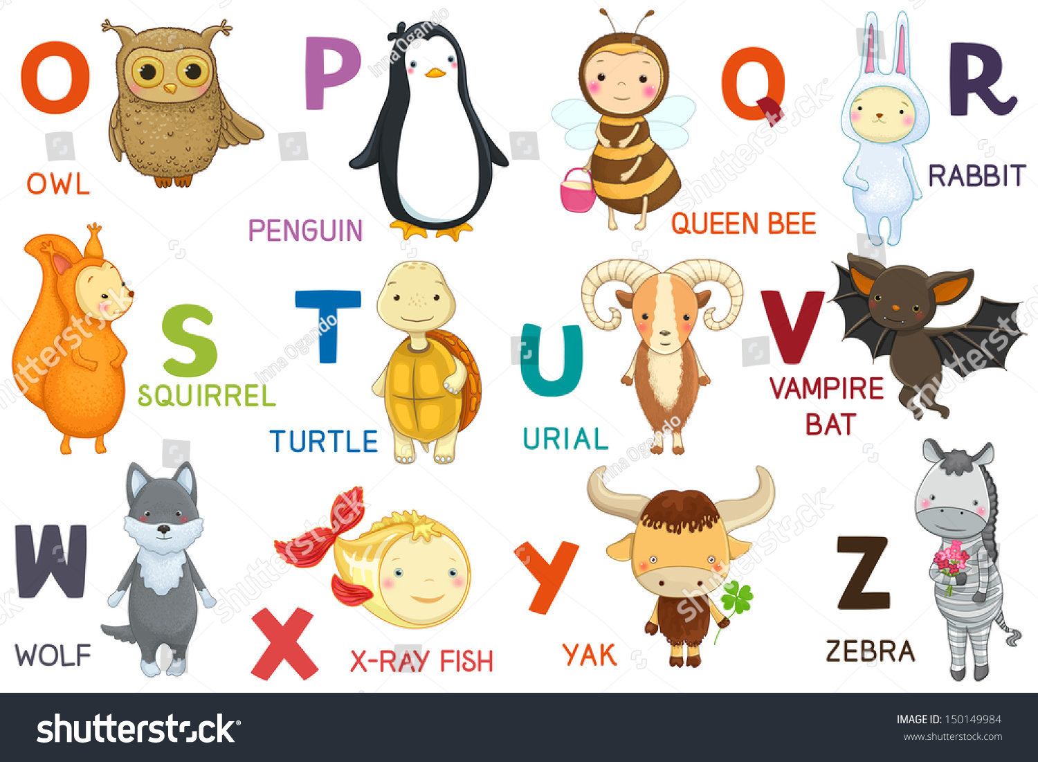 Animals abc letter oz cartoon characters stock vector for Animals with the letter o in their name
