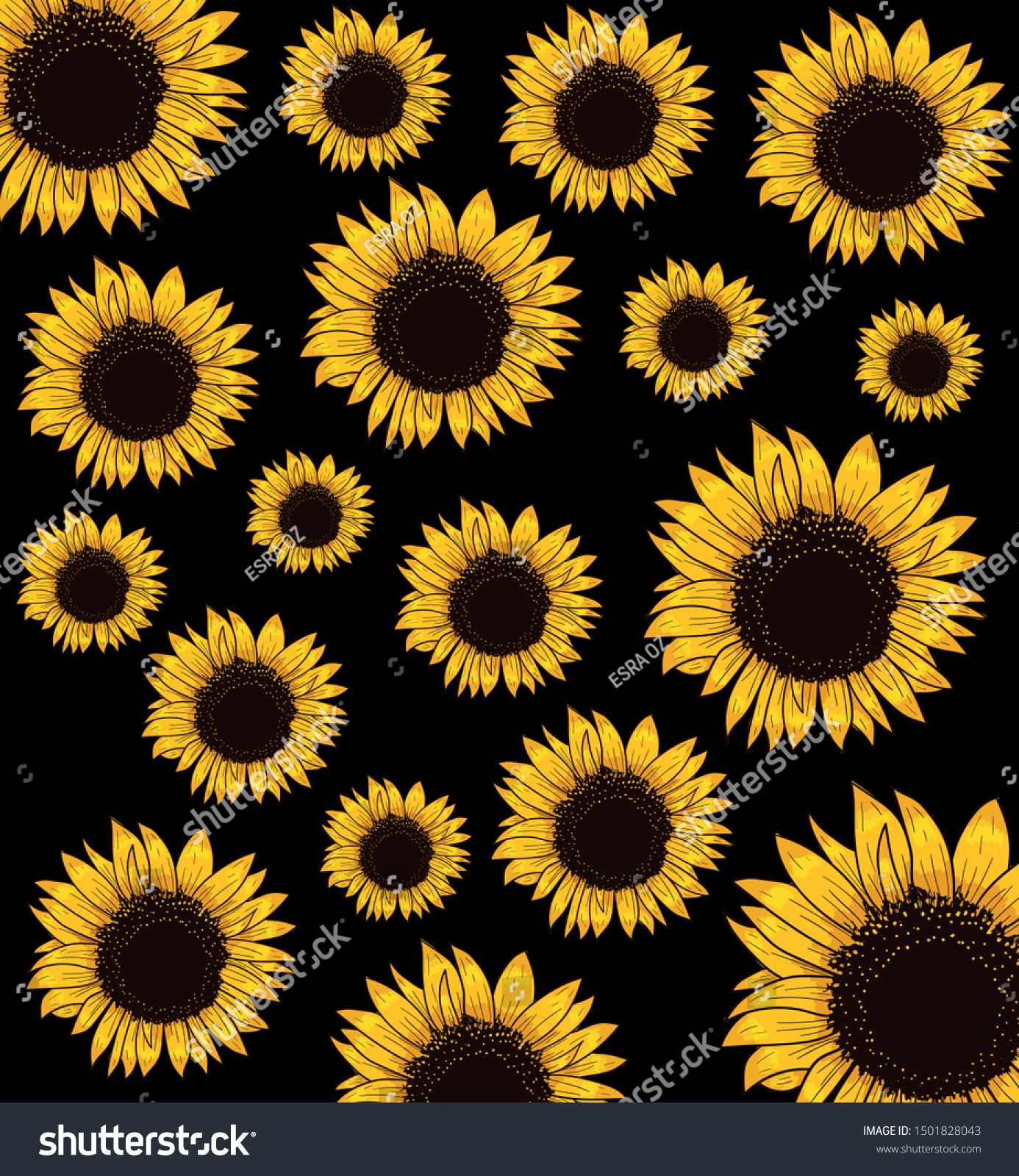 stock vector pattern with sunflowers on a black background vector illustration vekt r 1501828043