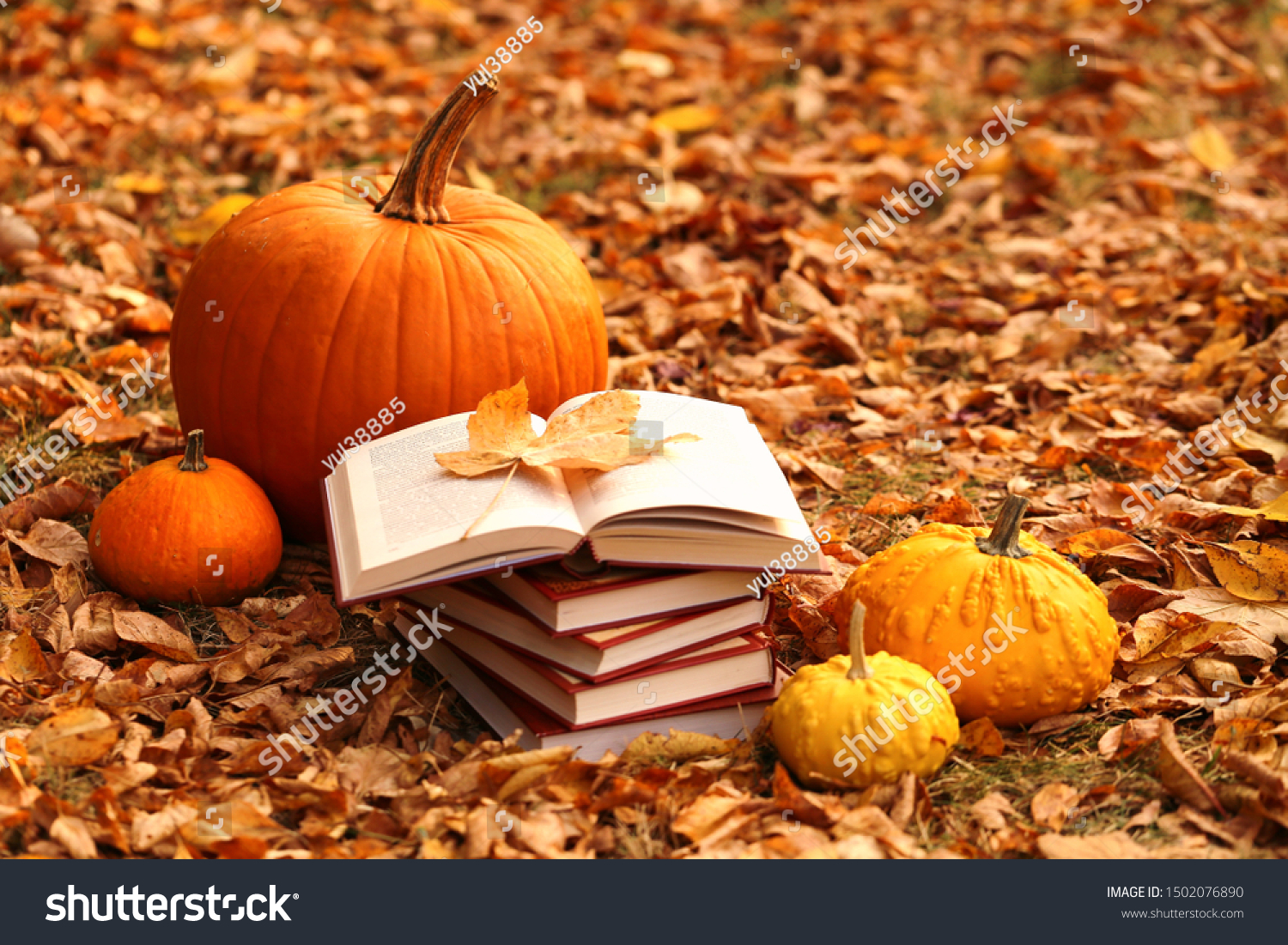 Autumn books. Reading books about autumn.Halloween books. Stack of books and orange pumpkins set on autumn foliage on nature background #1502076890