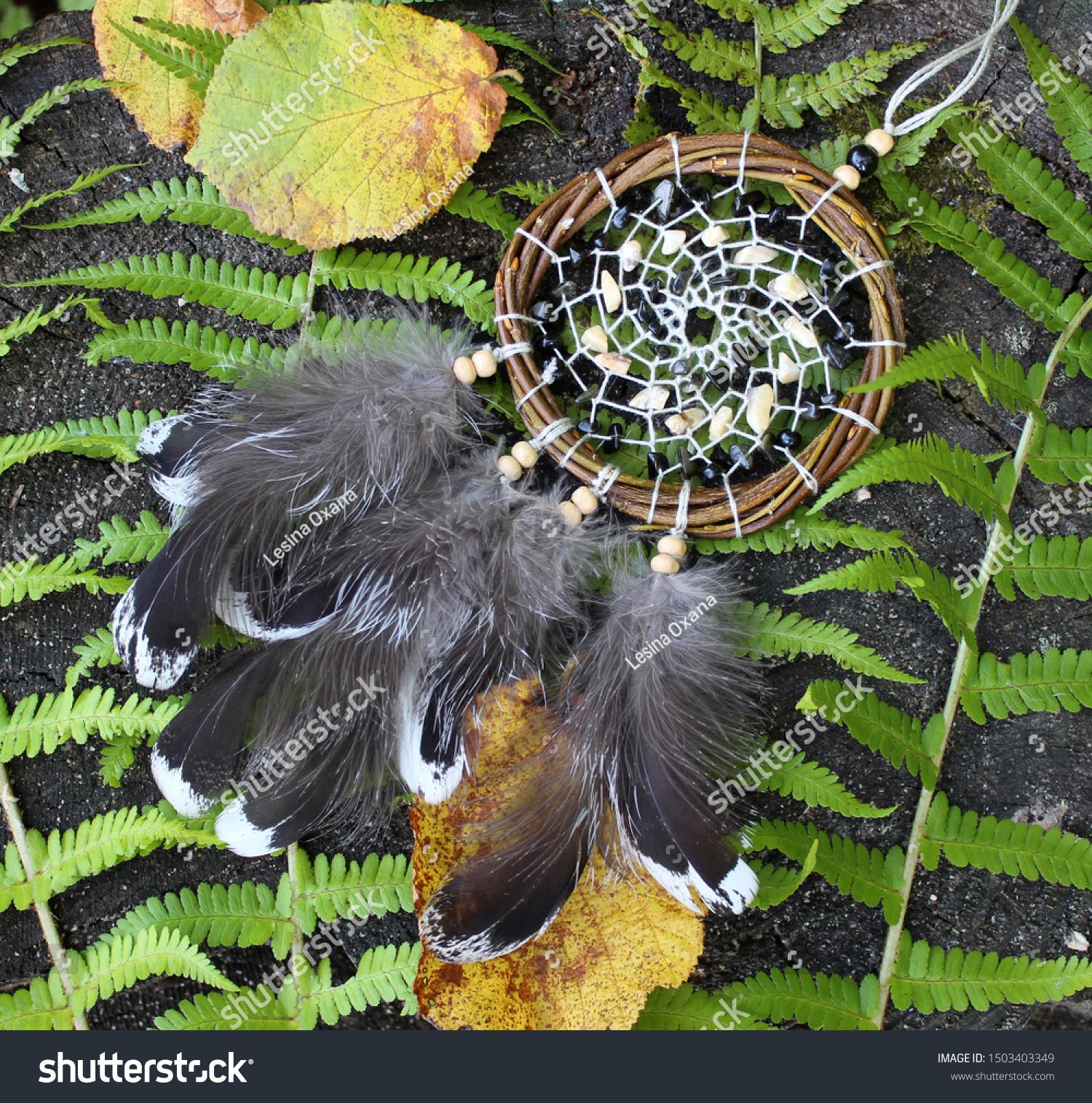 Dreamcatcher Native American Amulet Home Decor Stock Photo Edit Now 1503403349