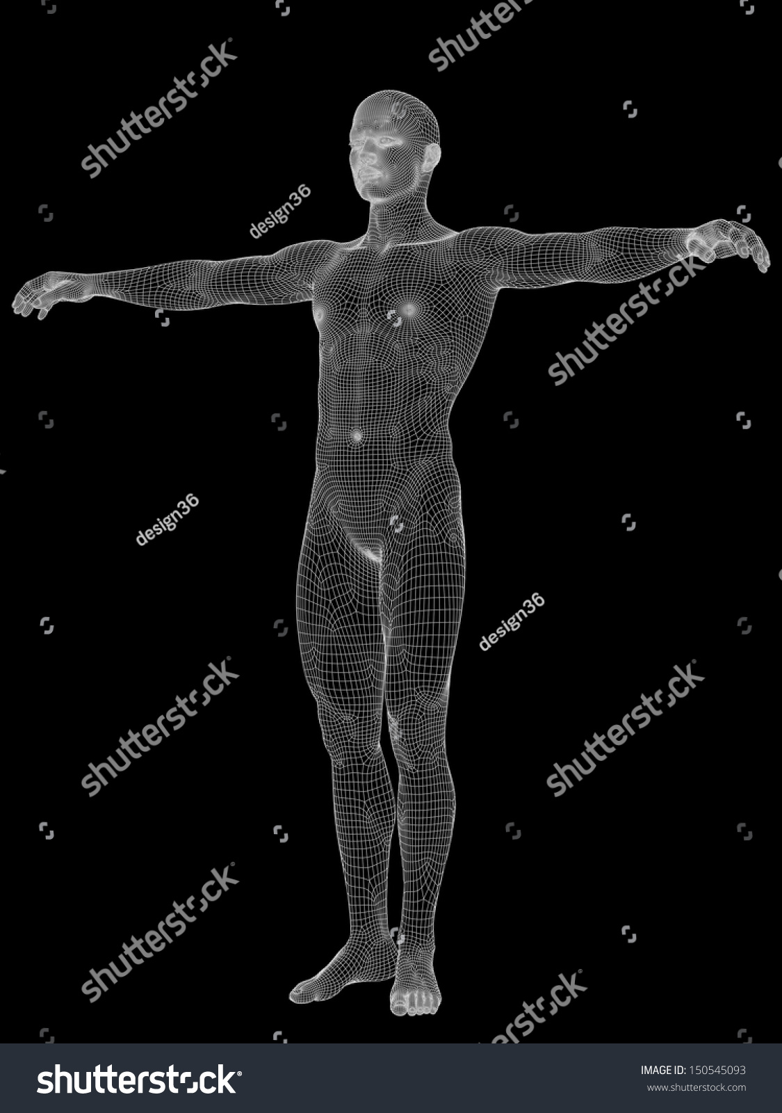 3 D Human Male Anatomy Made White Stock Illustration 150545093 ...
