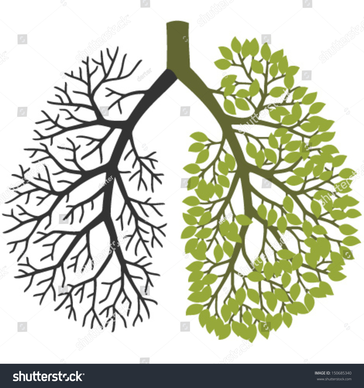 copd inhalers without steroids