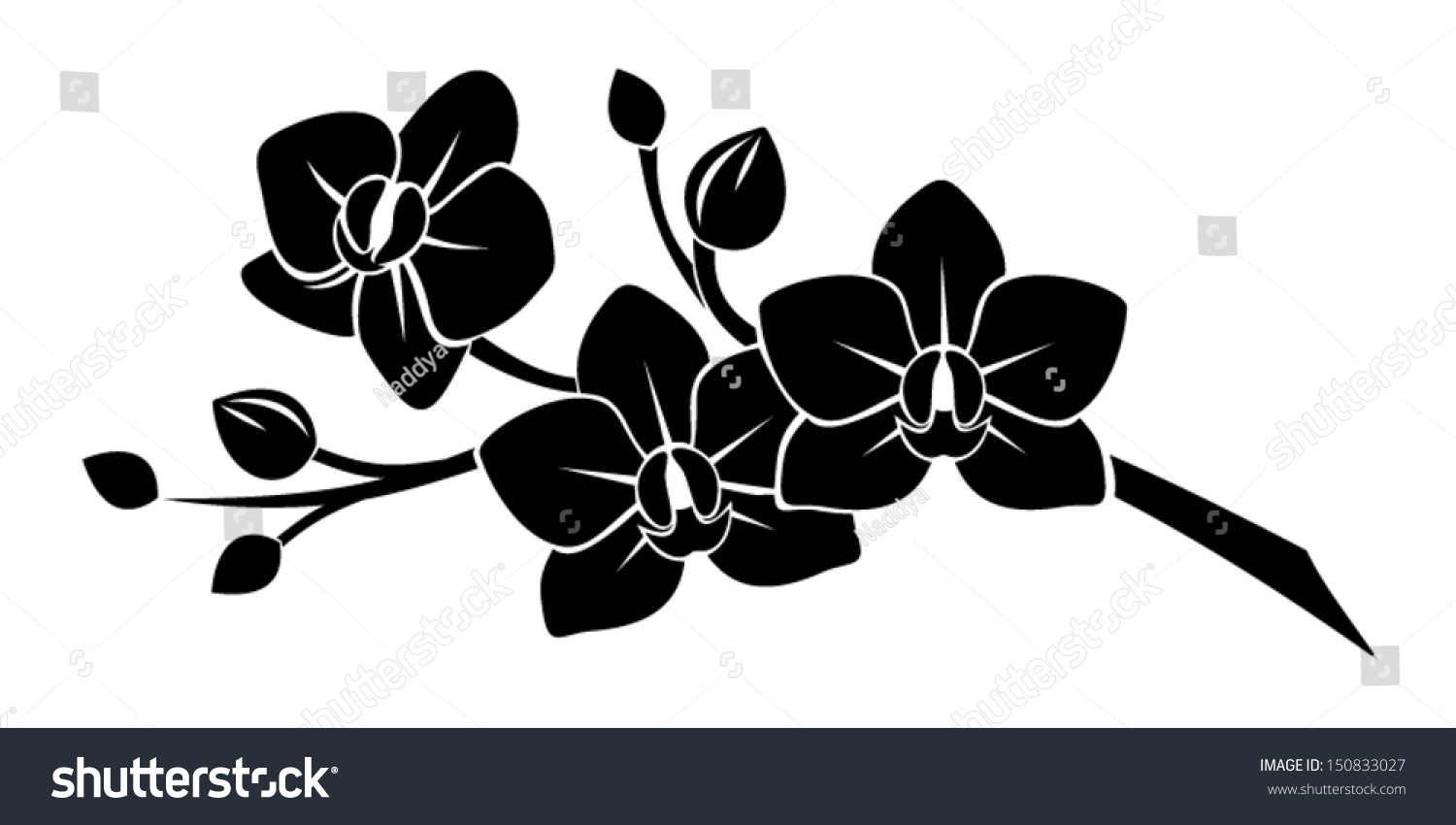 Black silhouette orchid flowers vector illustration image for Mural hitam putih keren
