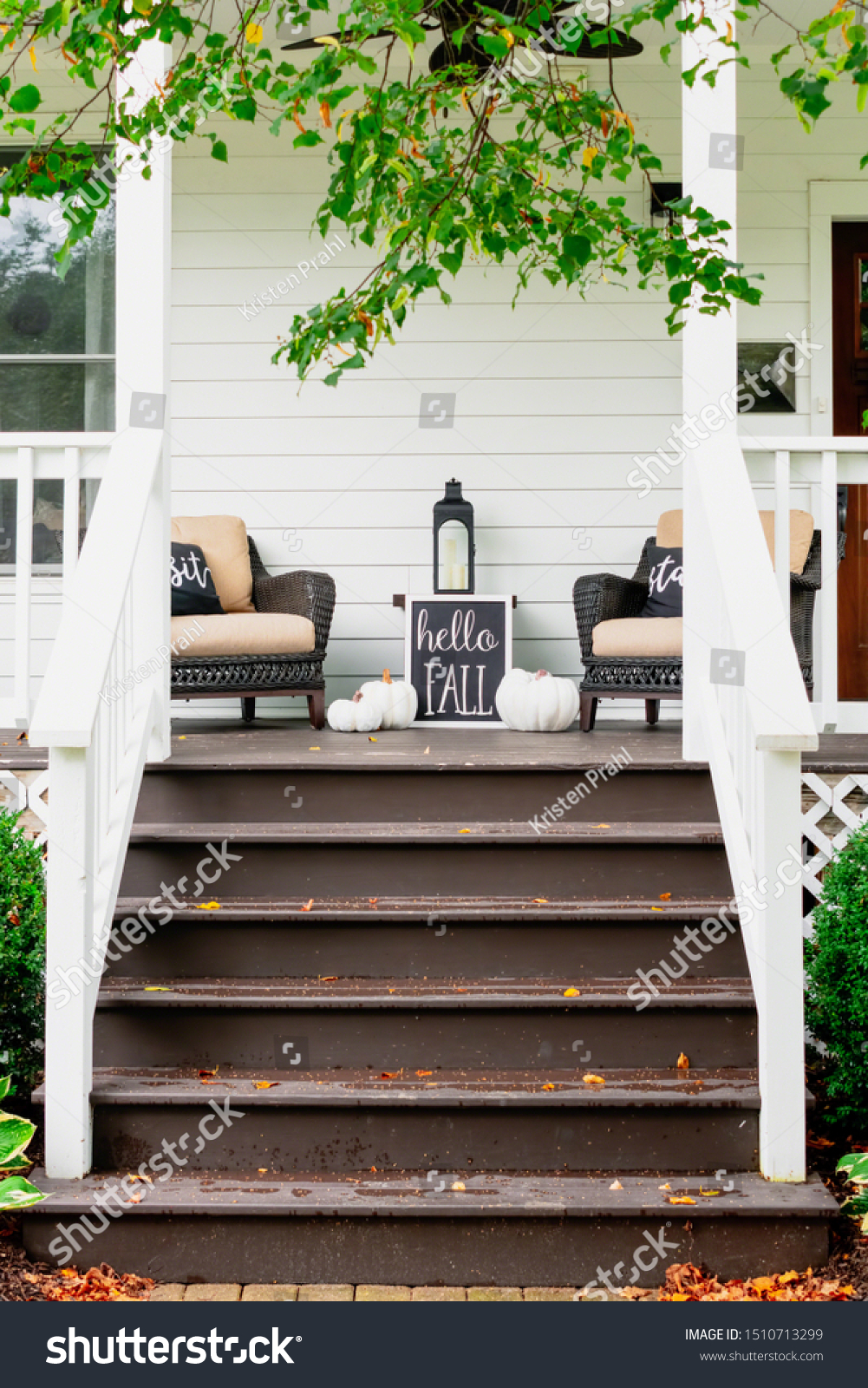 Stylish Fall Decorations Black White On Stock Photo Edit Now 1510713299