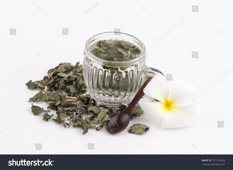 Royalty Free White Crane Flower Herbal Tea 151372463 Stock Photo