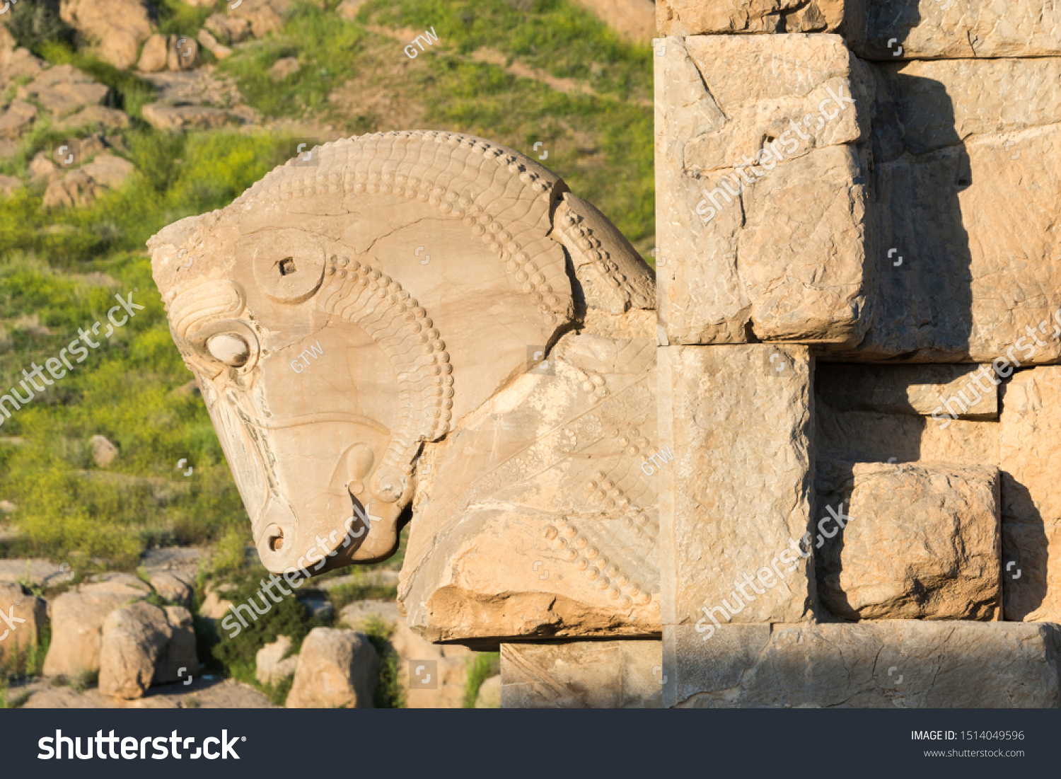 Persepolis Horse Sculpture On Capital Fars Stock Photo Edit Now 1514049596