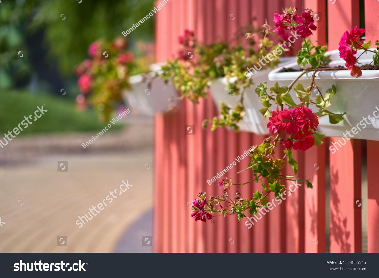 Collectible India Metal Red Flower Railing Planter Pot Hanging Vase Bucket Garden Wall Fence Balcony Garden Patio Planters 1 Pcs Red Amazon In Garden Outdoors