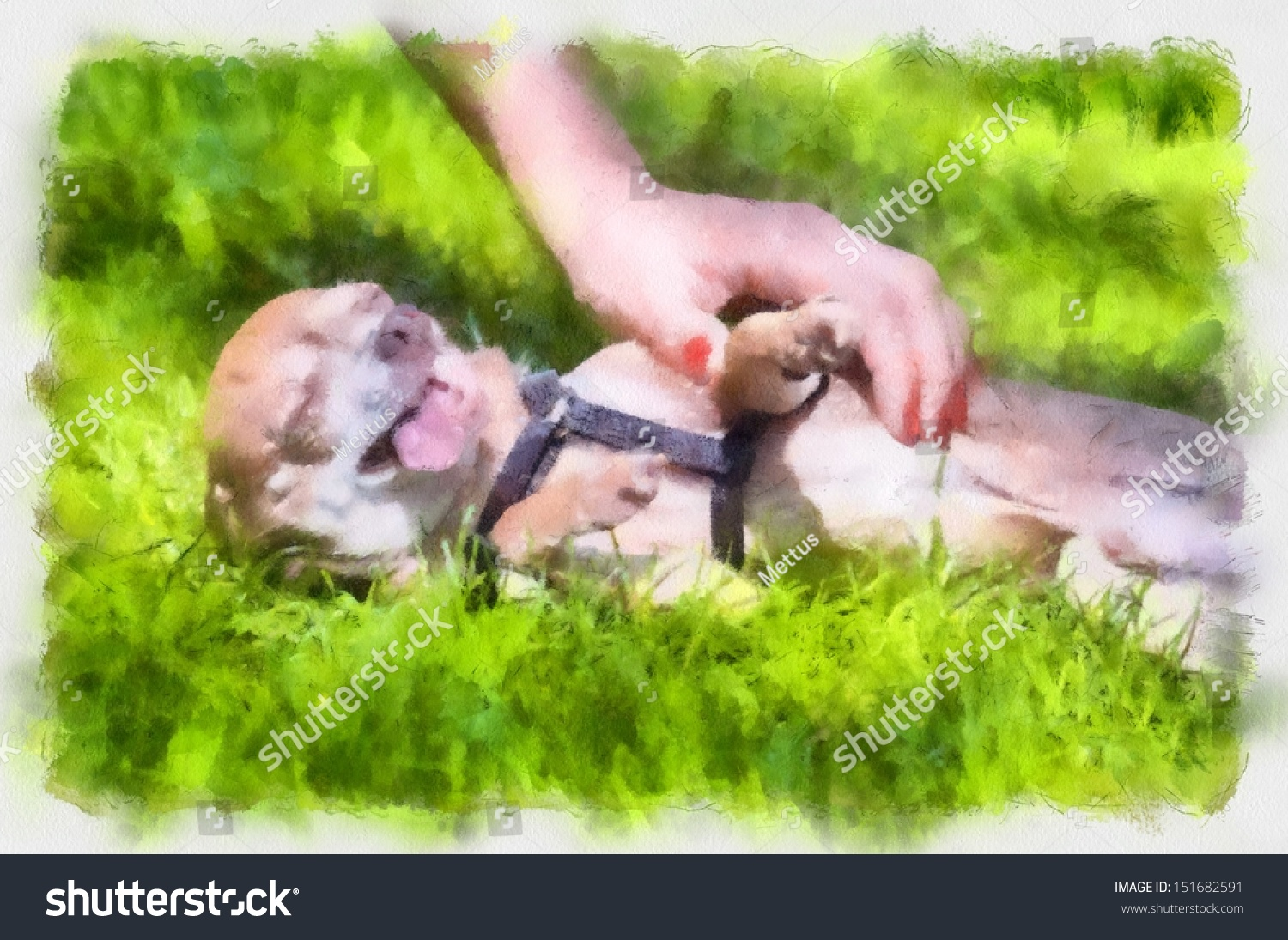 stock-photo-little-dog-in-grass-watercol