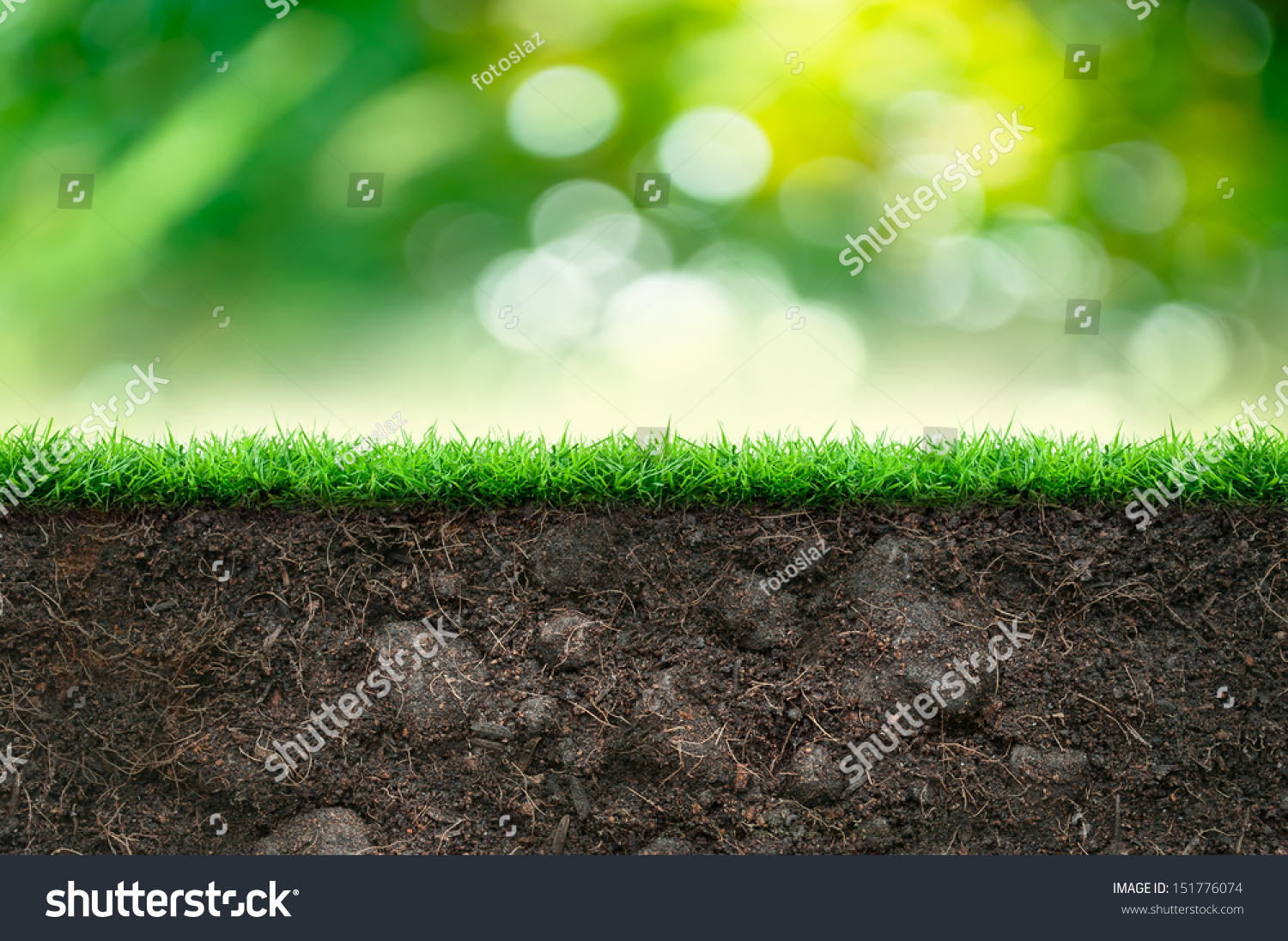 Soil green grass beautiful background stock illustration for Soil and green