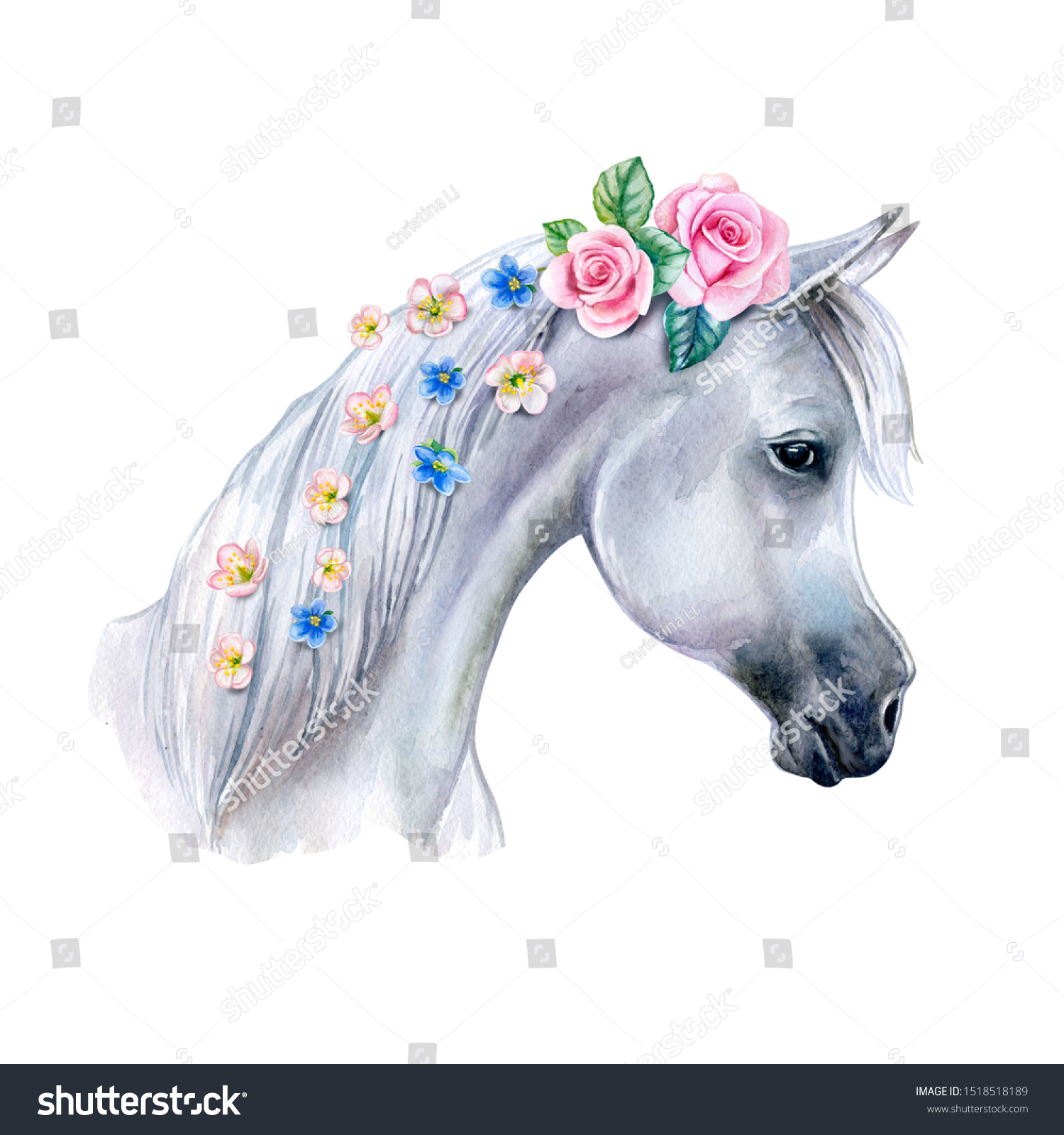 Head White Horse Pink Flowers Isolated Stock Illustration 1518518189