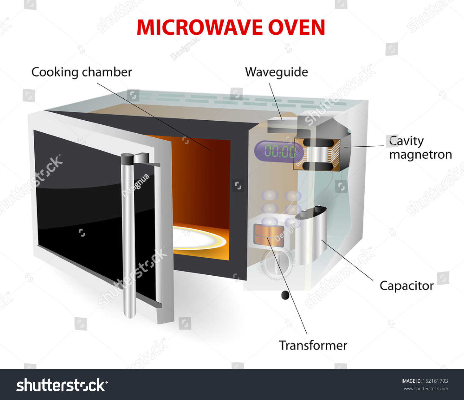 Microwave Oven  Vector Diagram  How Does This Work