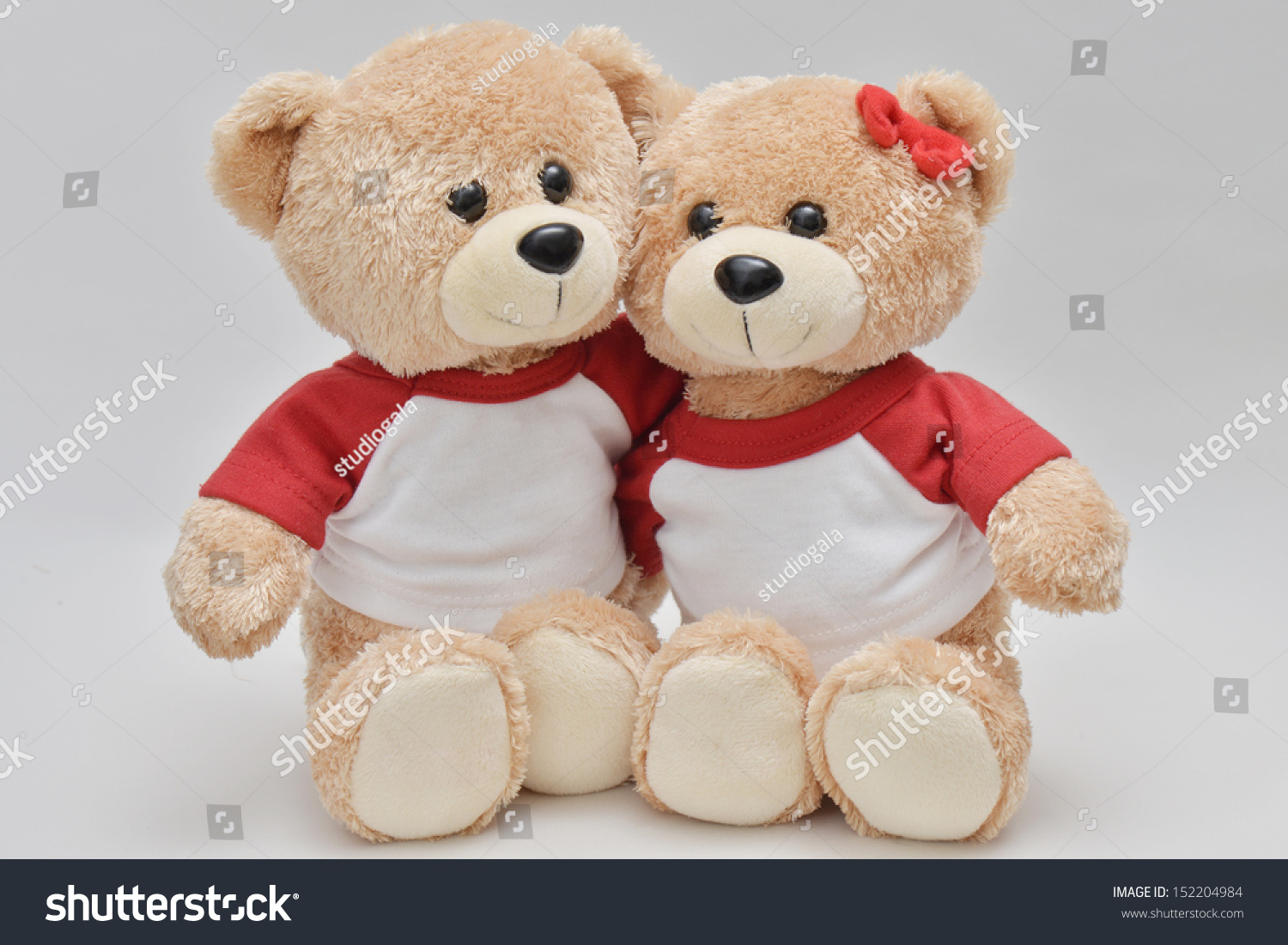 Couple Of Light Brown Teddy Bear On White Background Stock