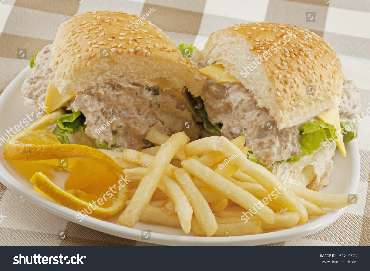 Aninimal Book: A Delicious Tuna Salad Sandwich With French Fries Stock ...