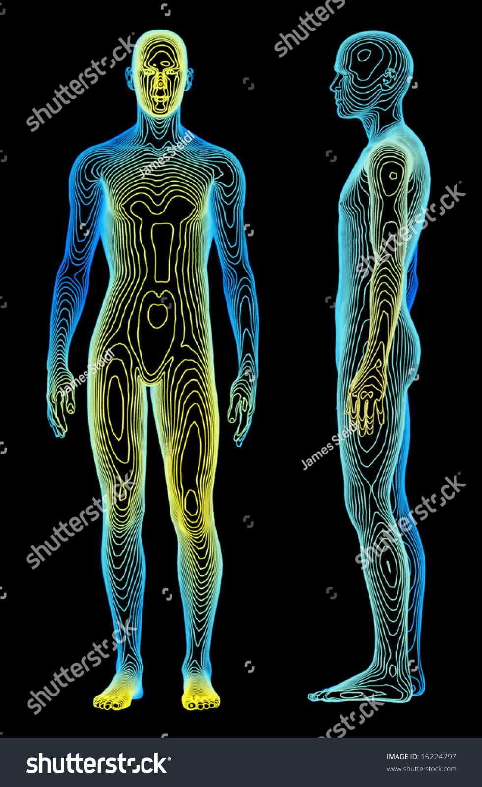 Medical Concept Human Body Stock Illustration 15224797 ...
