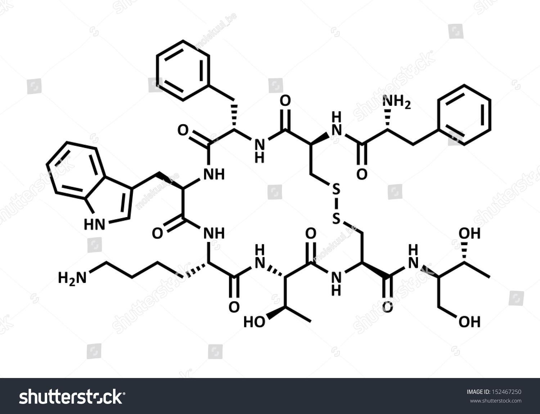 somatostatin hormone Gallery