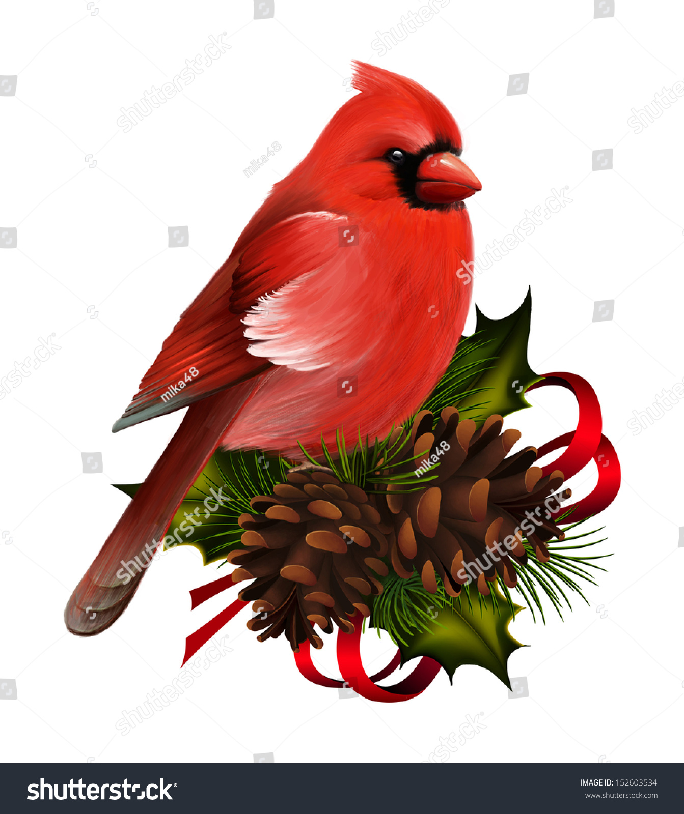 Bird Red Cardinal On Christmas Decor Stock Illustration ...
