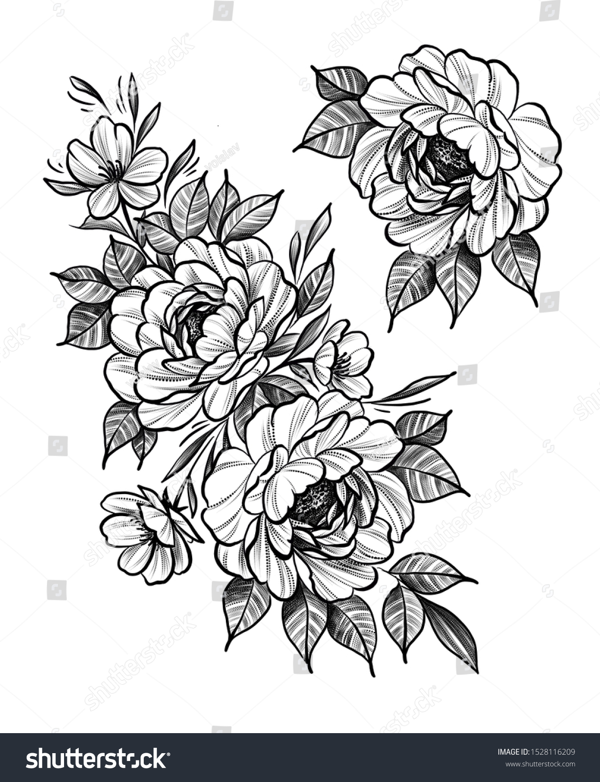 Beautiful Flowers Drawing Sketch Tattoo Design Stock Illustration 1528116209,Japanese Cherry Blossom Festival Dc