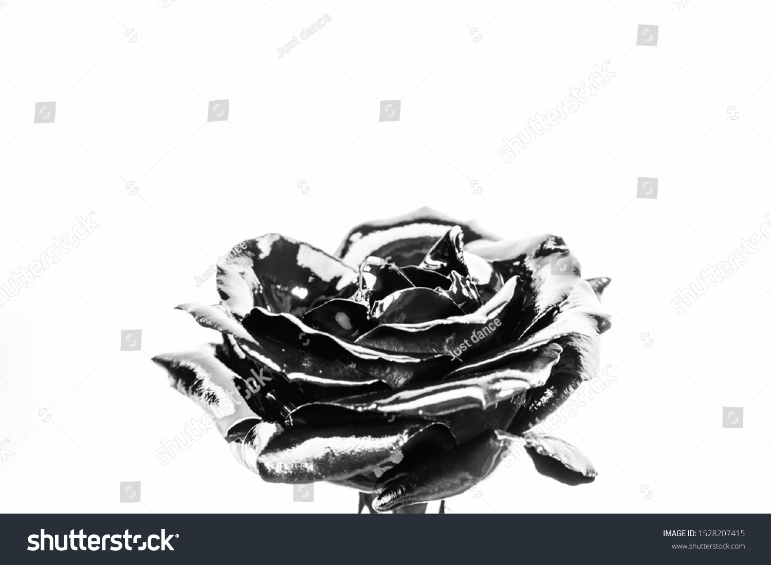 Forging and sculpture. Beautiful black silver flower. Floral shop. Metallic steel color. Flower covered metallic paint close up. Metal flower. Abstract art. Eternal beauty. Botany concept. #1528207415