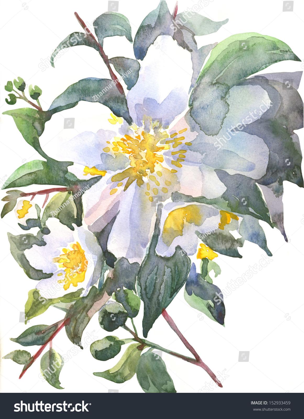 Jasmine white flowers stock illustration 152933459 shutterstock jasmine white flowers izmirmasajfo
