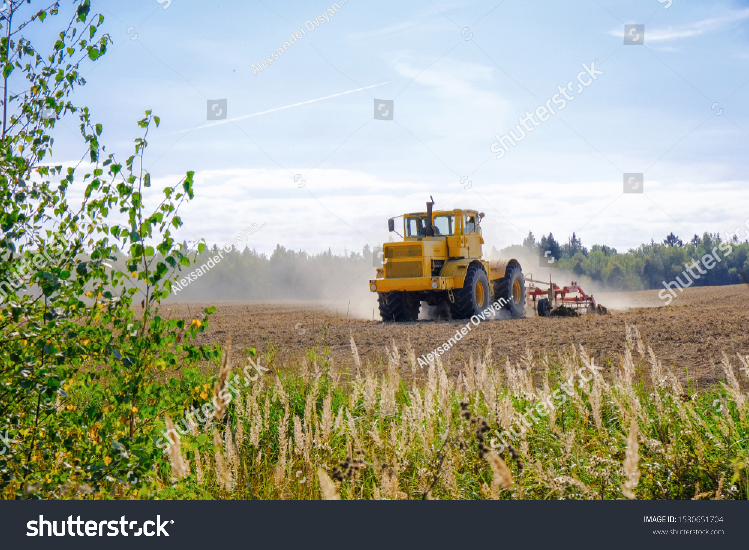 A farm tractor cultivates land after harvesting grain.  #1530651704