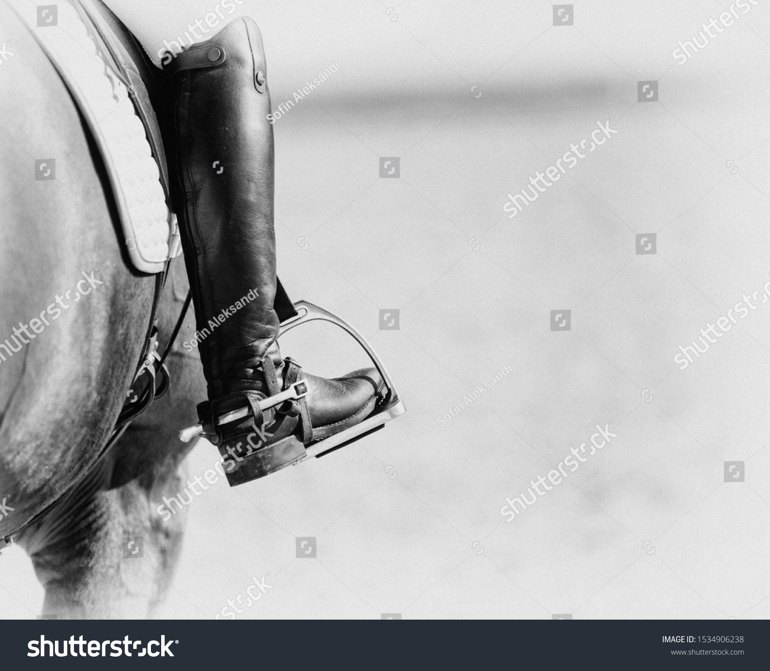 Croup Red Horse White Saddle Foot Stock Photo Edit Now 1534906238