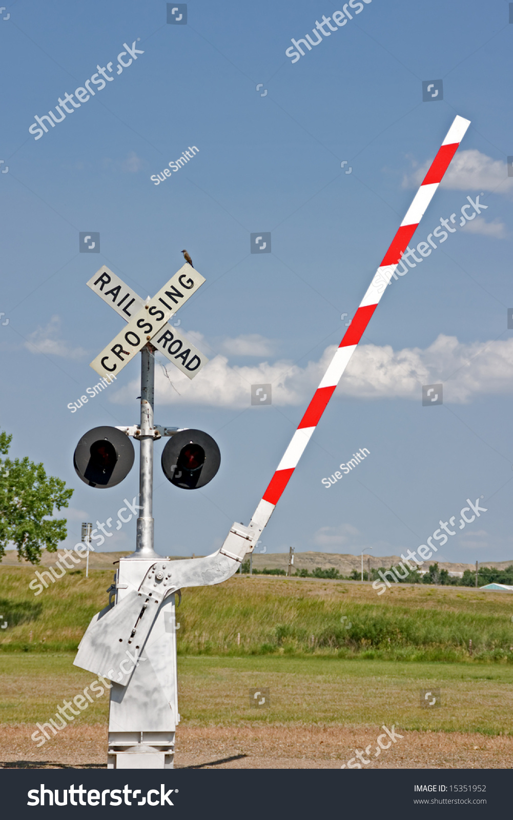 stock-photo-railroad-crossing-signal-with-lights-barrier-and-a-bird-on-the-sign-at-a-museum-15351952.jpg
