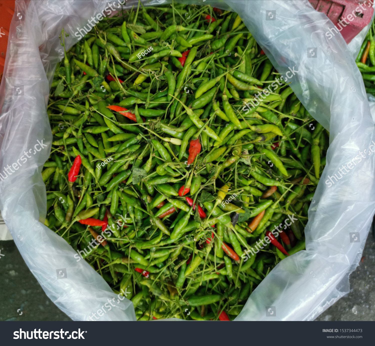 Essential ingredients to Thai cuisine, green and red chili