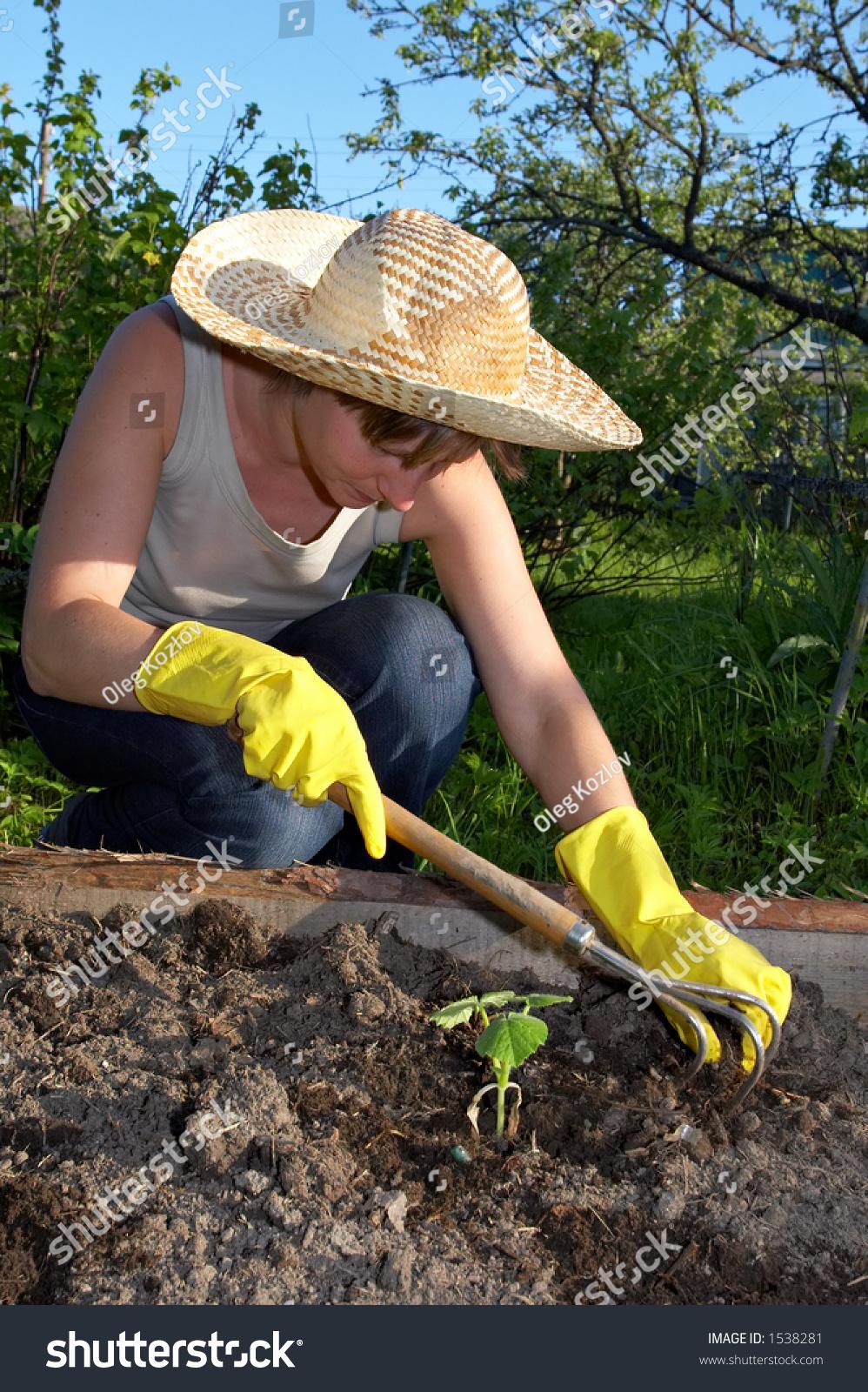 Garden work weeding stock photo 1538281 shutterstock - Weeding garden make work easier ...