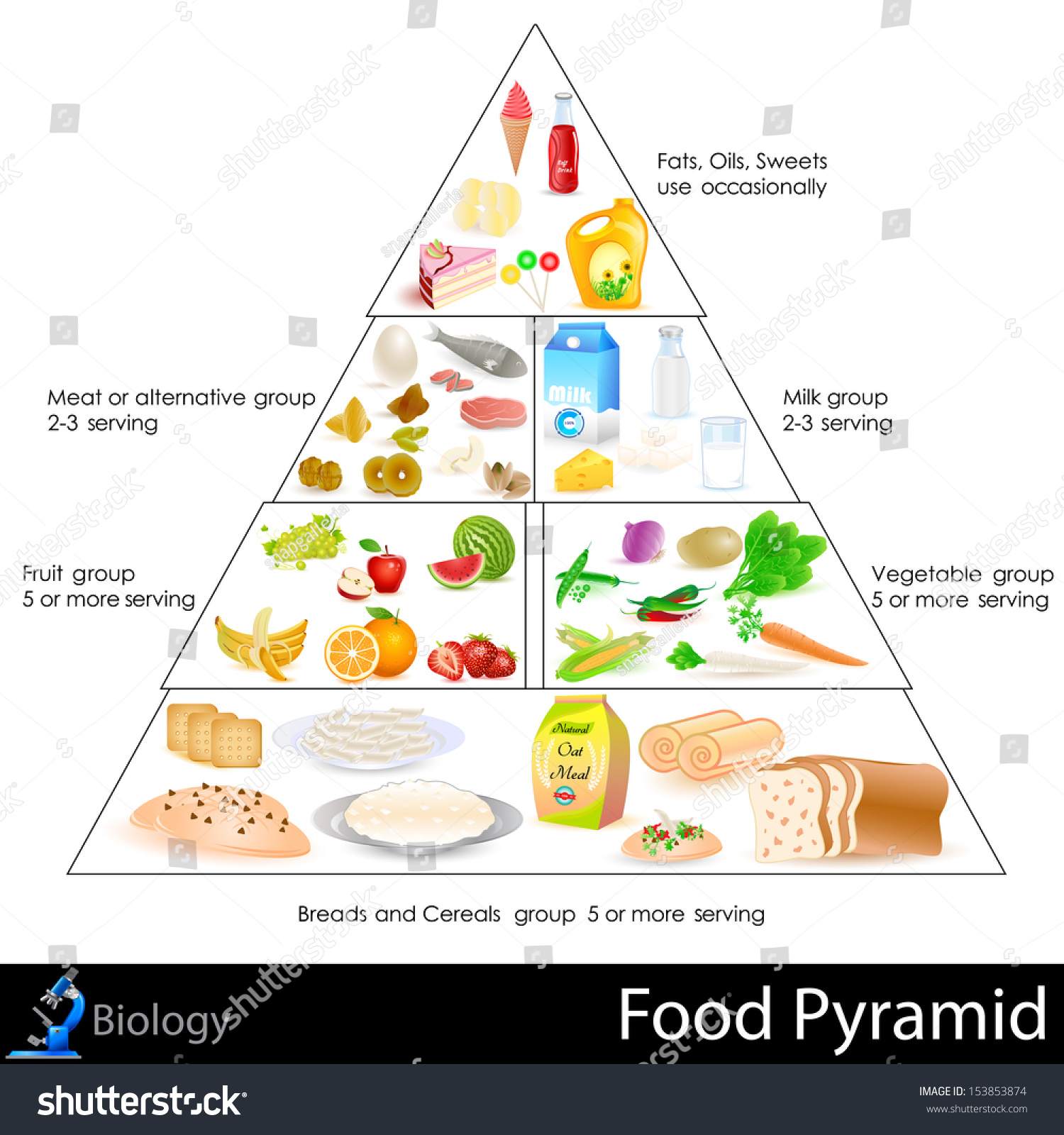 Food Pyramid Essay