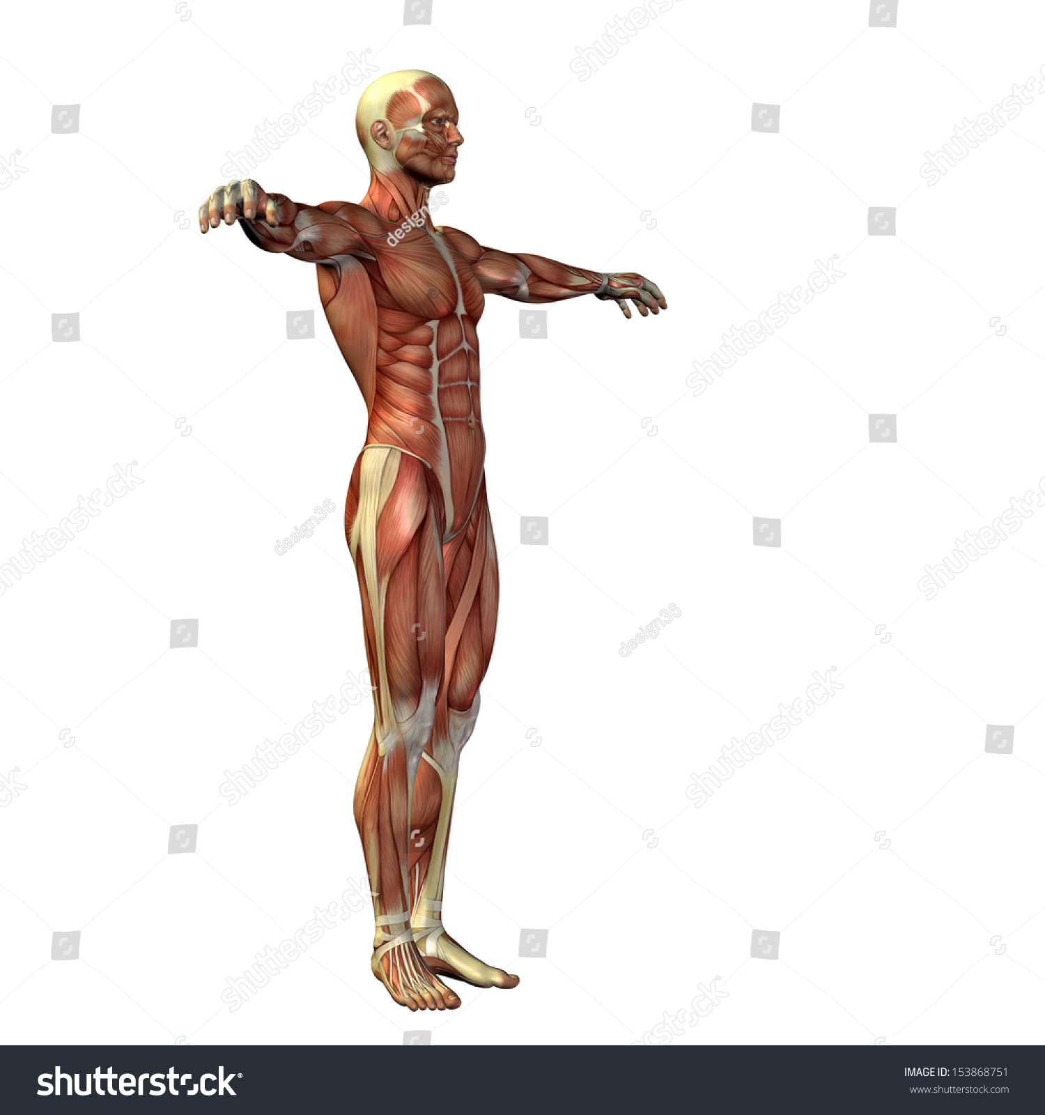 High Resolution Concept Conceptual Human Man Stock Illustration ...
