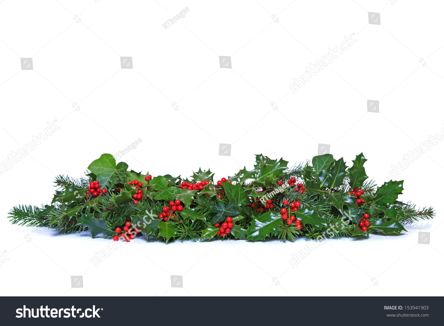 Why is holly a traditional christmas decoration - A Traditional Christmas Garland Made From Fresh Holly With Red Berries Green Ivy Leaves And