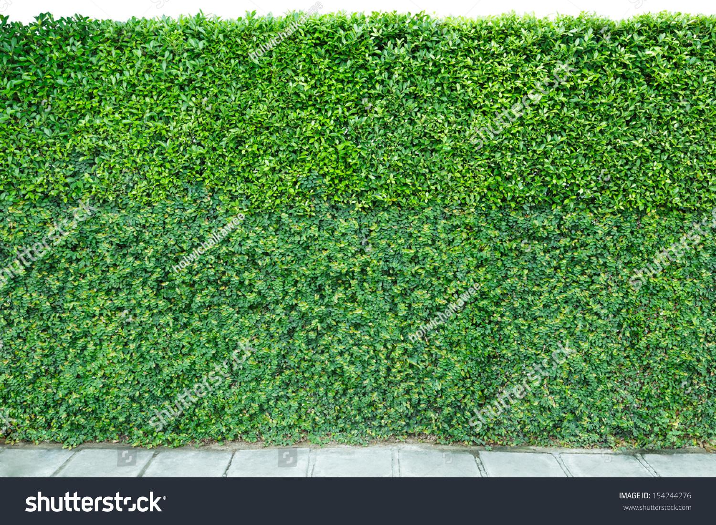 Garden Bricks Floor: Quanzhou olympic garden china brick pavers. A ...