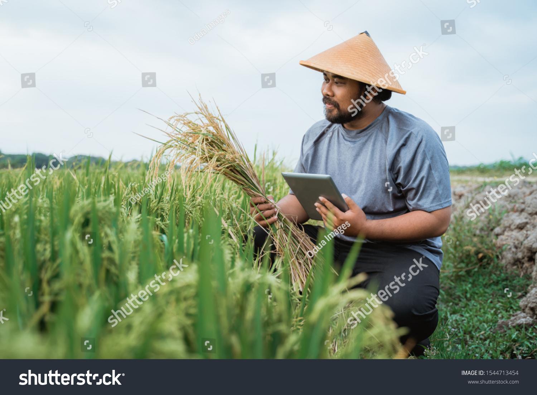 Modern Farmer Using Smart Technology Gadget Stock Photo Edit Now 1544713454