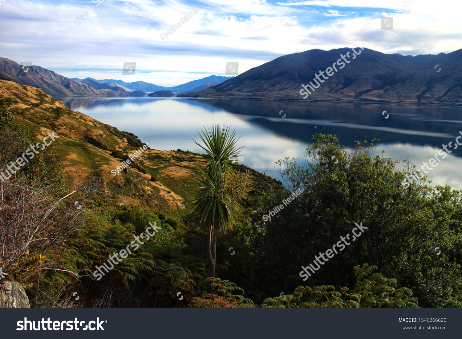 stock-photo-tranquil-landscape-with-lush