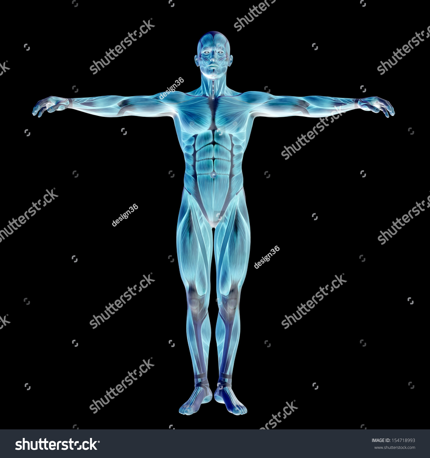 Fitness Biology: High Resolution Concept Or Conceptual Human Or Man 3d