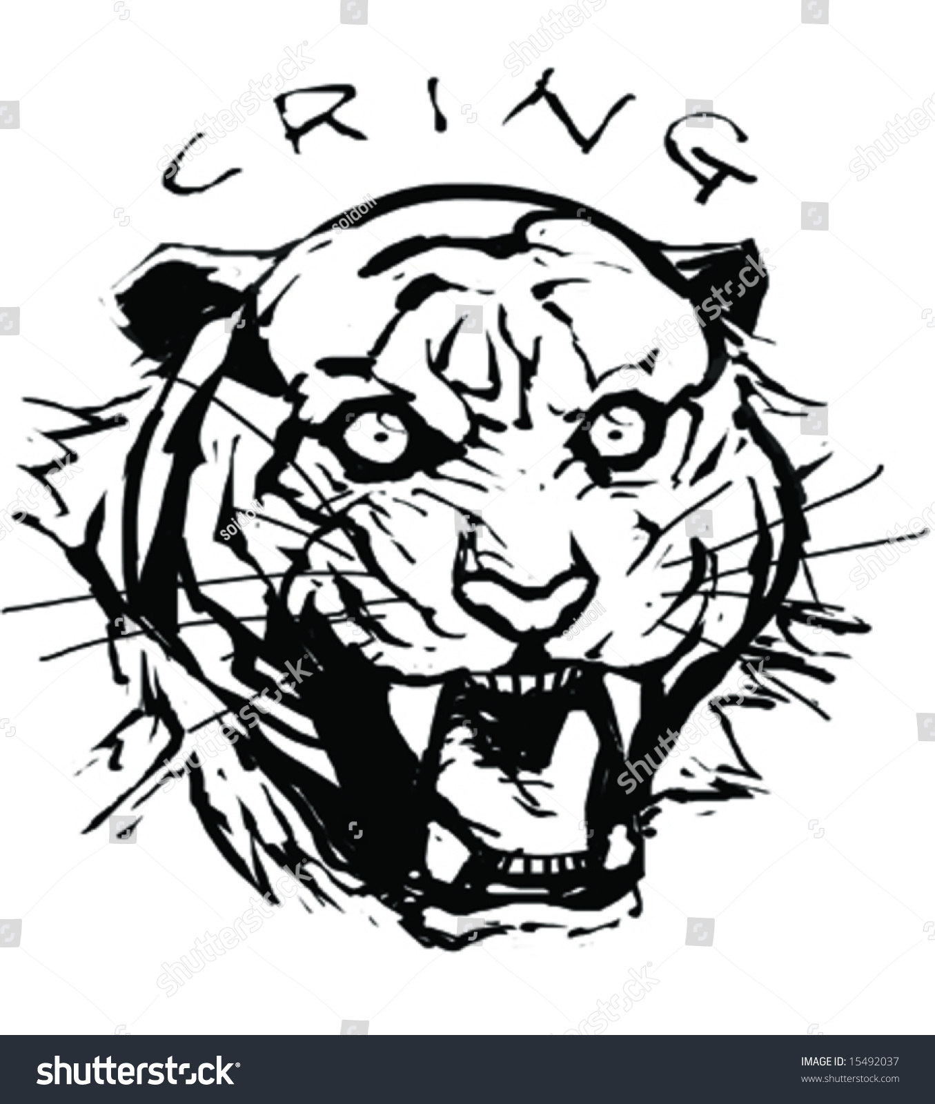 Tiger roar vector - photo#15