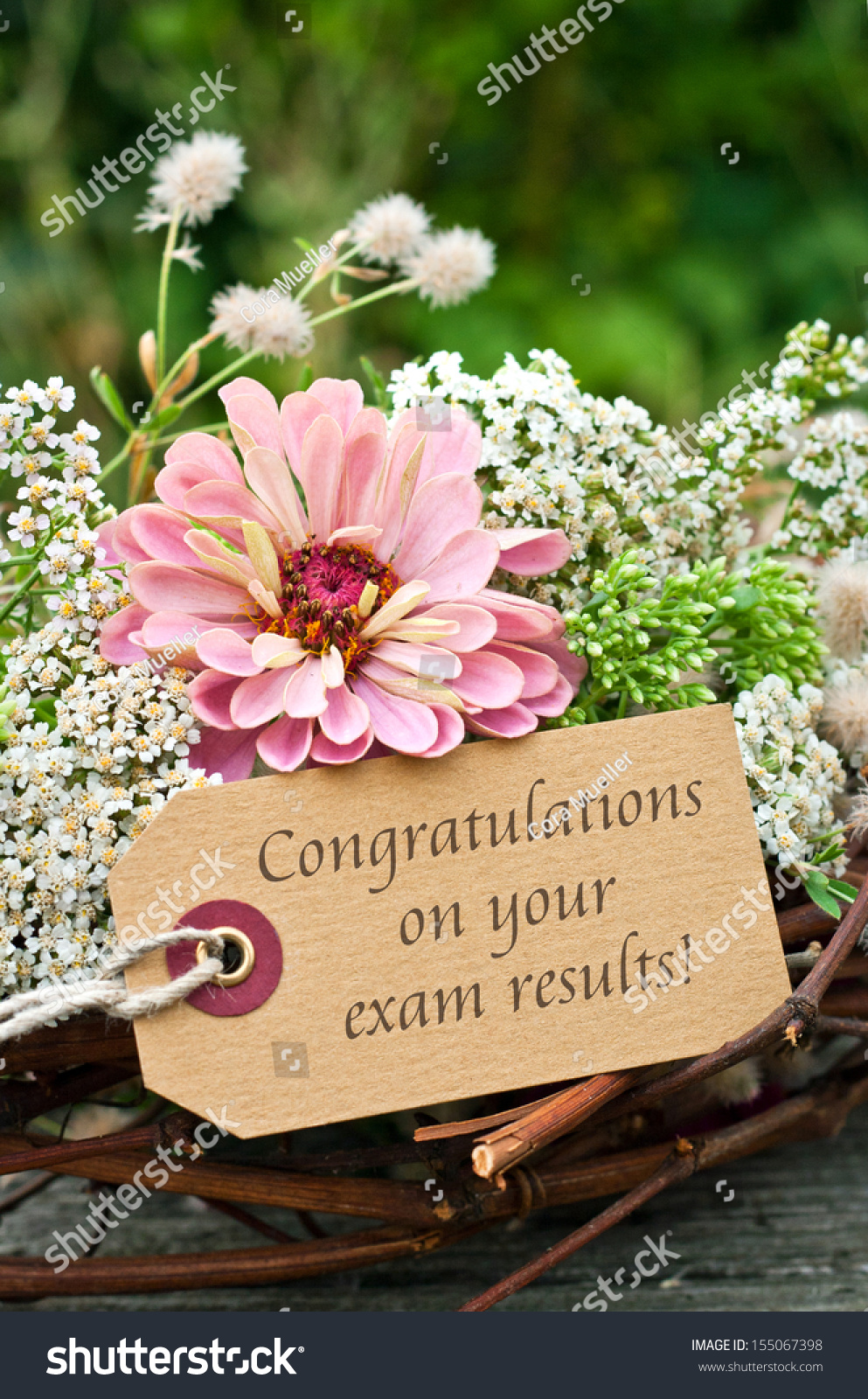 Flowers Card Examcongratulation On Your Exam Photo 155067398 – Exam Best Wishes Cards