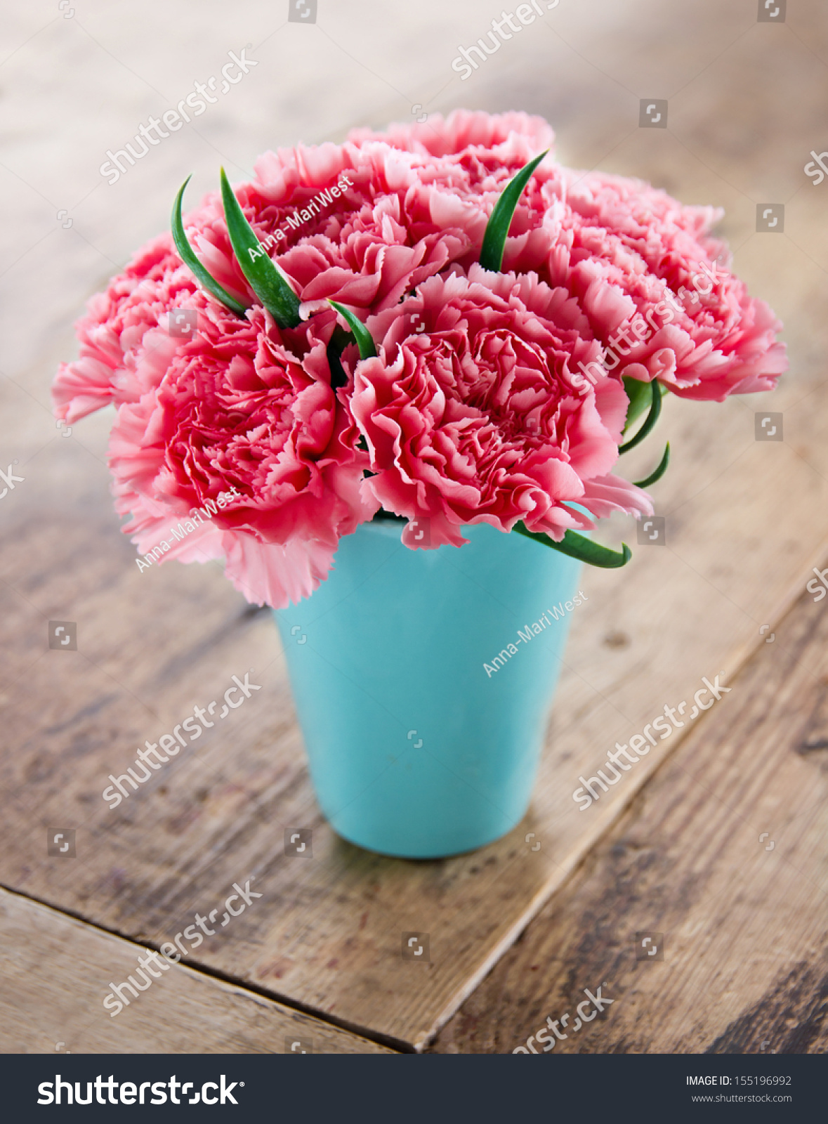 Royalty Free Pink Carnations Flower Bouquet In A 155196992 Stock