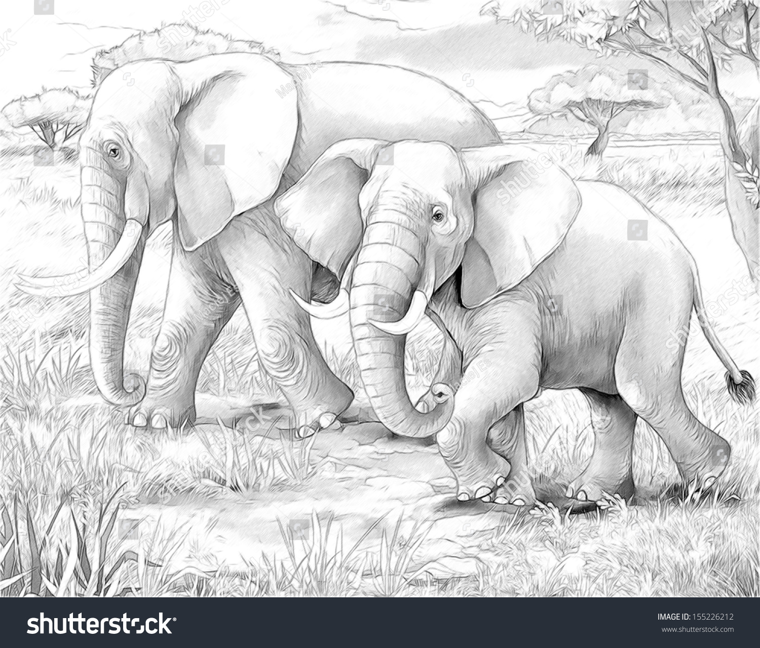 safari lions elephants coloring page illustration stock