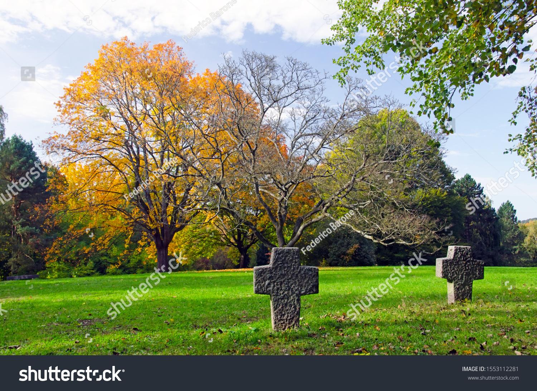 stock-photo-beautiful-view-of-an-autumn-