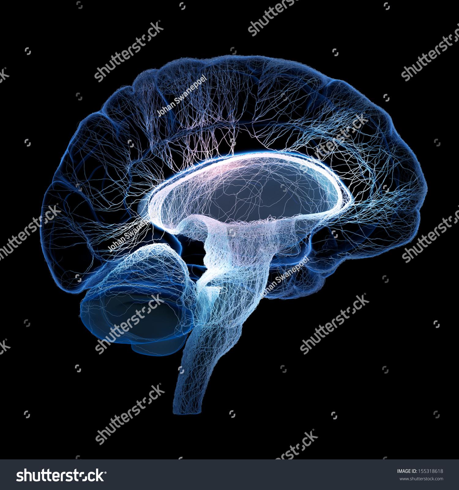 Neocortex: Online Image & Photo Editor