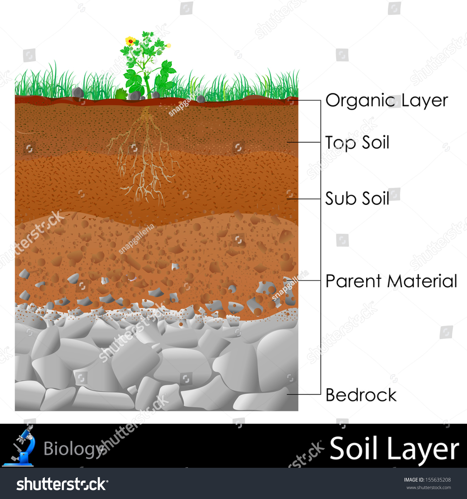 Easy edit vector illustration diagram layer stock vector for Soil 3 phase diagram