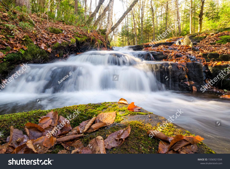 stock-photo-beautiful-river-stream-in-fo
