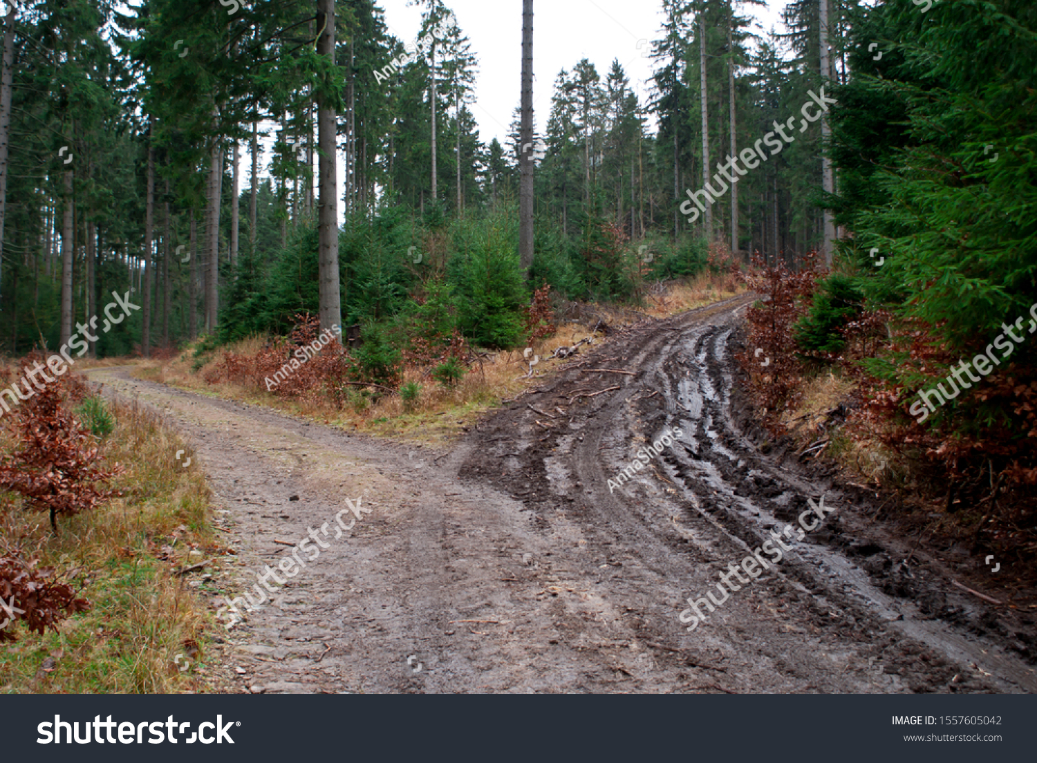 stock-photo-the-crosroad-choose-your-way