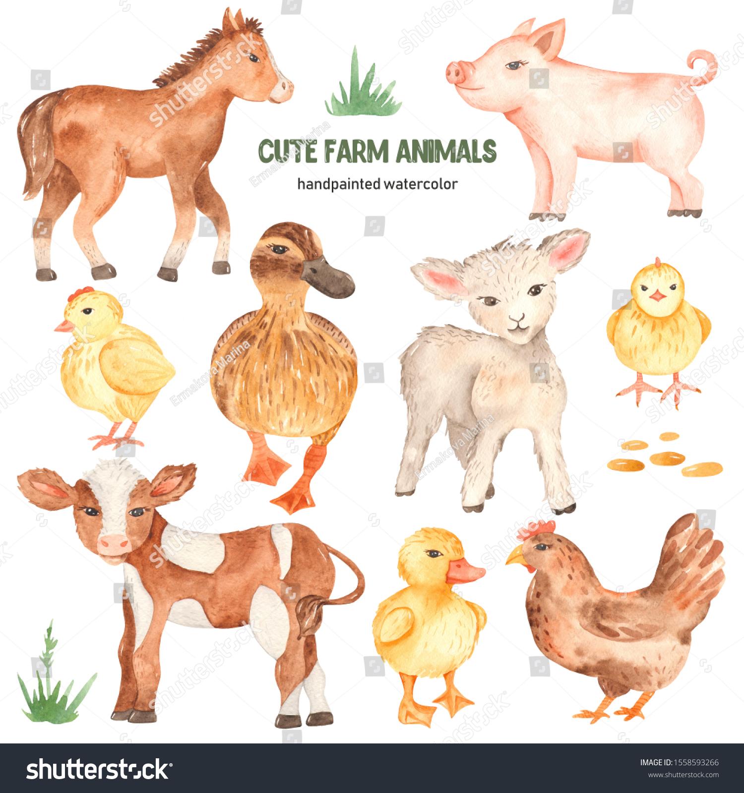 Cute Farm Animals Horse Pig Lamb Stock Illustration 1558593266