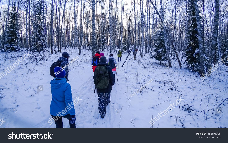 stock-photo-people-walk-through-the-wood