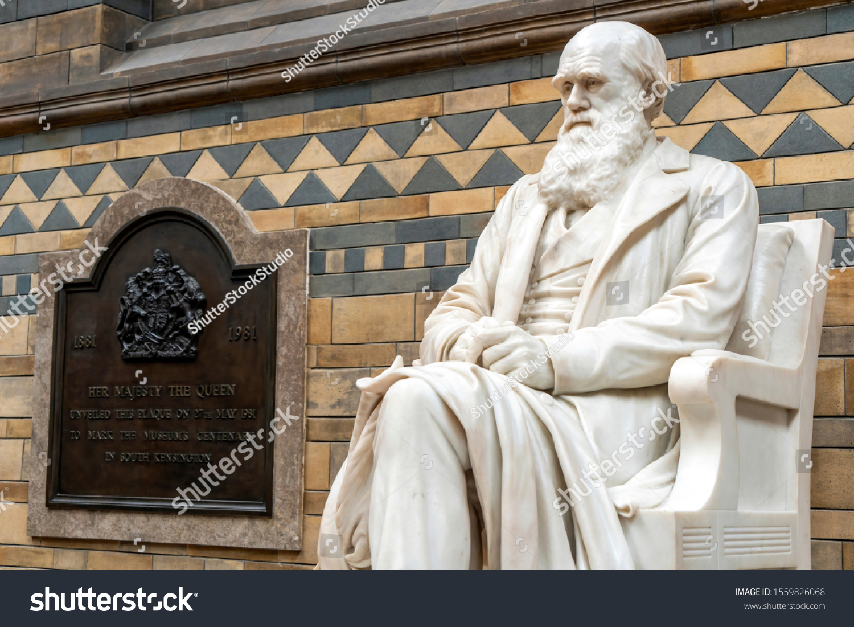 Charles Darwin English Biologist and Naturalist New Photo 6 Sizes!