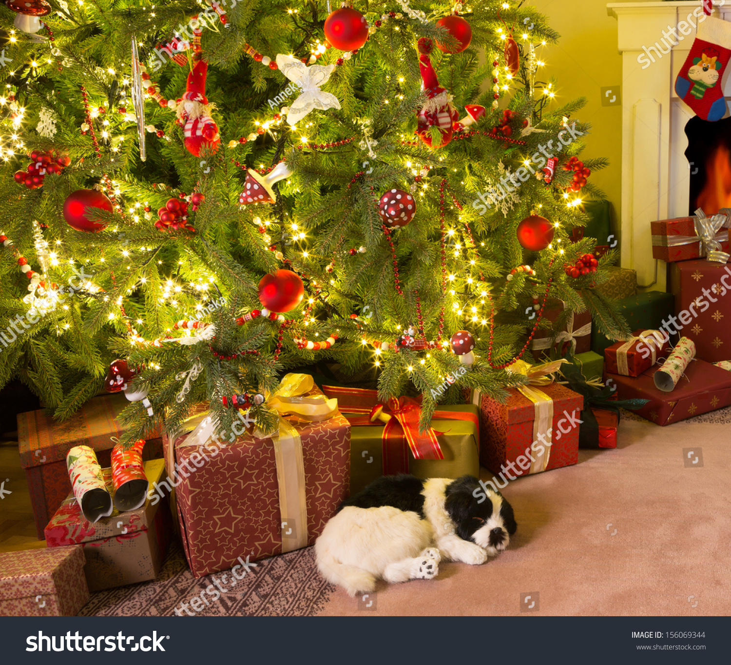 Presents Under The Christmas Tree: Colorful Presents And A Dog Under The Christmas Tree Stock